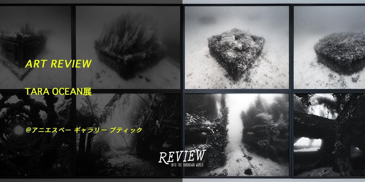 アニエスベー ギャラリー ブティックの「TARA OCEAN展」をレポート 船上のアーティストが解く海洋環境問題 ART REVIEW vol.4|表参道&原宿のメディア - OMOHARAREAL